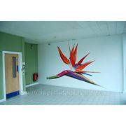 Художественная роспись стен в офисе фото