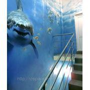 Лестницы Роспись стен под заказ фото