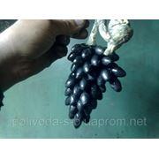 Кованая виноградная гроздь фото