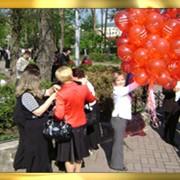 Букеты и подарки из воздушных шаров. фото