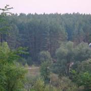 Участки в К-Святошинском районе фото