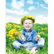 Ознакомление с природой для детей фото