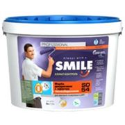 Краска SMILE SD-54 декоративная с эффектом теплосбережения фото
