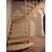 Сосновая лестница с расширенным входом фото