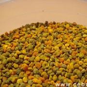 Цветочная пыльца (обножка) фото
