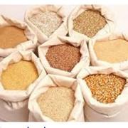 Экспорт сельскохозяйственных продуктов. Экспорт зерна. фото
