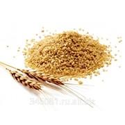 Крупа пшеничная (Твёрдых сортов) фото