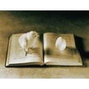 Замовити написання навчального посібника, підручника фото