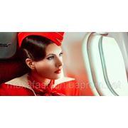 Униформа для стюардесс и любые виды униформы фото