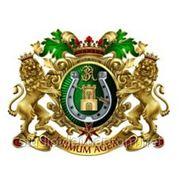 Родовой герб, Зеленская фото