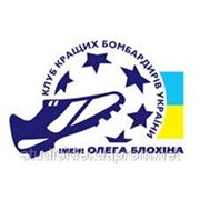 Логотип футбольного клуба, фирменный стиль фото