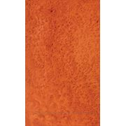 Шпон Мадрона корень/кап 0,6 мм