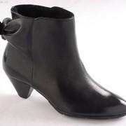 Ботинки женские ESTIMA C605_T74 фото