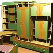 Изготовление мебели на заказ Киев. фото