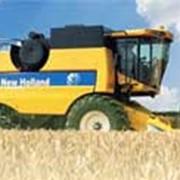 Уборка кукурузы фото