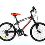 Велосипед горный rockway tiger 204004r/01 фото