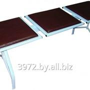 Секция стульев Лаванда-Т3 фото