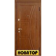 Двери входные металлические (бронированые) фото