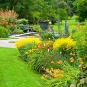 Уход за садом и участком фото