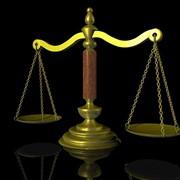 Услуги по хозяйственному праву; Послуги з господарського права фото