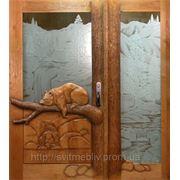 Двери для баров фото