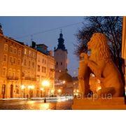 Львиные сны древнего города фото