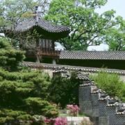 Тур в Корею фото