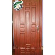 Бронированные двери 960х2050 фото