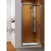 Душевая дверь Radaway Dolphi Premium Plus DWJ 140 (коричневое стекло)