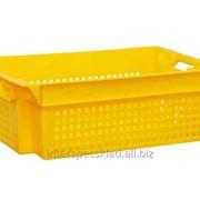 Пластиковый ящик для овощей и фруктов 600x400x200 фото