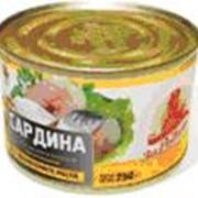Сардина атлантическая натуральная с добавлением масла, 250 гр, Консервы рыбные в масле фото
