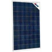 Солнечная батарея LDK 240W-24V, poly фото