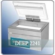 Упаковщик банкнот Deep 2241 (вакуумный) фото