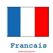 Французский (Курсы иностранных языков) фото