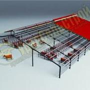 Реконструкция свинарников,Архитектурное проектирование,строительство,строительство свинарников,коровник,птицефабрика,проектирование, фото