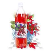 Напитки фруктовые `Барбарис` фото