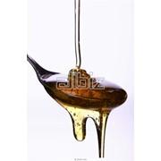 Мед подсолнечниковый фото