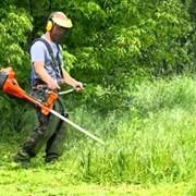 Покос травы в Херсоне и области. фото