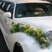 Изготовление украшений для свадебных автомобилей, Оформление автомобиля фото