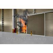 Ворота противопожарные EI -30,60,90,120 фото