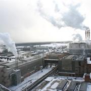 Утилизация и вывоз, транспортировка биоотходов фото