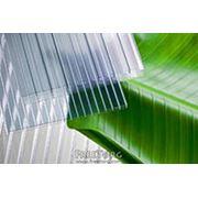 Плиты поликарбонатные монолитные фото