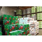 холодильные камеры для хранения фруктов фото