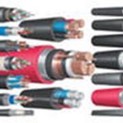 Электротехническая продукция. фото