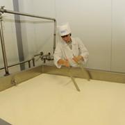 Линия для производства белых сыров: моцарелла, фета, брынза TESSA, оборудование для производства сыра, купить, Киев фото