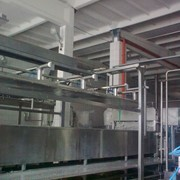 Установка для прессования сыра в пласте. фото