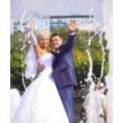"""Свадебная фотосъемка """"ЭЛИТ"""" фото"""
