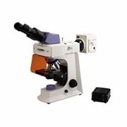 Микроскоп бинокулярный флуоресцентный светодиодный BS-2036F(LED) фото
