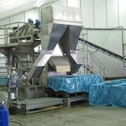 Линия очистки переработки заморозки консервирования сушки зеленого горошка сладкой кукурузы фасоли бобовых туннель скороморозильный морозильный туннель фото