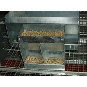 Комбикорм для кроликов ПЗК-91 фото